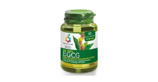 THÈ VERDE EGCG 60 cps veg | OPTIMA NATURALS