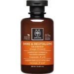 SHINE & REVITALIZING SHAMPOO 250 ML | Shampoo illuminante rivitalizzante | APIVITA
