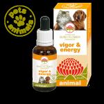 VIGOR&ENERGY Fiori Australiani Gocce 30 ml | BUSH FLOWER - Essence Animal
