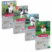 ADVANTIX SPOT ON | Antiparassitario per cani | BAYER