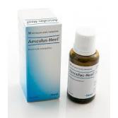 AESCULUS | Gocce omeopatiche 30 ml | GUNA  Heel