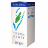 AGNUS CASTUS | Tintura Madre 60 ml | BOIRON