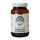AMBROSIA WITHANIA Tonico generale 60 CPR | AMRITAM - Maharishi Ayurveda Herbs