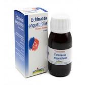 ECHINACEA ANGUSTIFOLIA Tintura Madre | Gocce per le difese immunitarie 60 ML | BOIRON