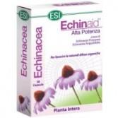 ECHINAID ALTA POTENZA | ESI - Echinaid