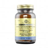 Fito-Omocisteina 60 Cps Veg| Integratore per il controllo dell'Omocisteina  | SOLGAR