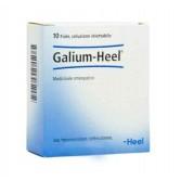 GALIUM |10 Fiale omeopatiche | GUNA Heel