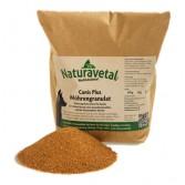 GRANULATO DI CAROTE | Integratore Vitamine e Oligoelementi 500 g cod.3131 | NATURAVETAL - Canis Plus