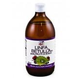 LINFA DI BETULLA | Succo Biologico Depurativo 500 ml | LA FINESTRA SUL CIELO