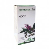 NOCE 26 Macerato Glicerico| Gocce per la pelle 50 ML | SPECCHIASOL