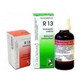 R13 | DR.RECKEWEG
