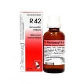 R42 Gocce 22 ML | DR.RECKEWEG