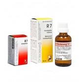 R 7 | Rimedio per fegato e vie biliari compresse | DR. RECKEWEG
