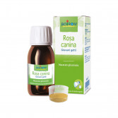 Rosa Canina Giovani getti | Macerato glicerinato 60 ml | BOIRON