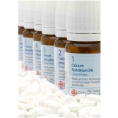 SALI DR. SCHUSSLER Maxi Formato 1000 CPR 250 G | SCHWABE