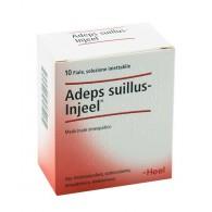 ADEPS SUILLUS Injeel 10 Fiale | GUNA - Heel