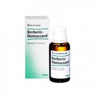 berberis-homaccord-gocce-30ml-guna-bravifarmacie