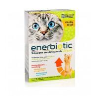 ENERBIOTIC Soluzione prebiotica orale per GATTI | PETFORMANCE