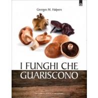 I FUNGHI CHE GUARISCONO | FREELAND