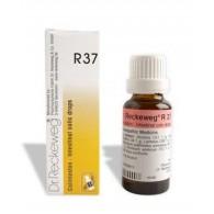 R37 Gocce 22 ML | DR.RECKEWEG