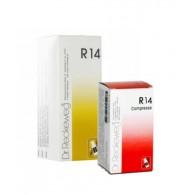 R14 | DR.RECKEWEG