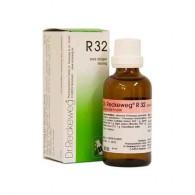 R32 Gocce 22 ML| DR.RECKEWEG