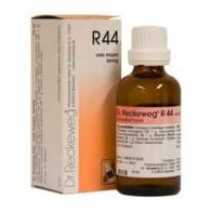 R44 Gocce 22 ML |DR.RECKEWEG