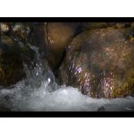 ROCK WATER gocce orali 10 ml | LOACKER - Fiori di Bach