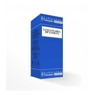 SANGUINARIA HP L Gocce 30 ML | LINDAS