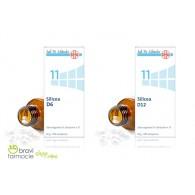 11 SILICEA Acido di Silicio 50g 200 cps | SCHWABE - Sali Dr.Schussler