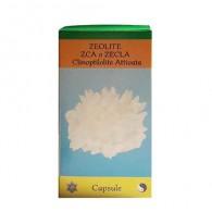 ZEOLITE ZECLA Clinoptilolite Attivata 100 CPS   ATENA